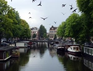 Birds in flight over a canal.