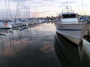 The marina mainly houses pleasure boats.