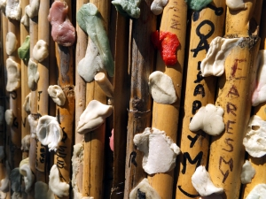 A tradition at Morrison's grave is to leave chewing gum on a bamboo barrier nearby.