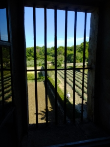 This is the view from Vincent's room. The bars suggest confinement, but Vincent had committed himself to the asylum. He was free to wander the grounds.
