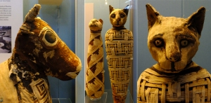 Royal pets were also preserved for eternity.
