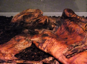 Lindow Man was found well-preserved in a peat bog in England, some 2,000 years after his burial.