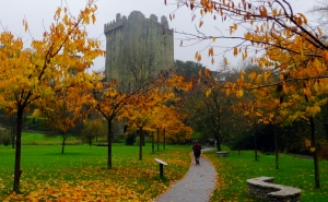 Just north of Cork is the world-famous Blarney Castle. Here visitors can kiss the Blarney Stone to receive the Irish gift of gab. An efficient system has been developed to move tourists through this ritual. As each one lies on his or her back to kiss the stone, a photo is snapped and offered for sale. We chose not to kiss the stone. I already talk too much, and it seems a bit unsanitary. The attendants must chuckle each time someone kisses the stone, since it is part of one of the castle's garderobes, or latrines.