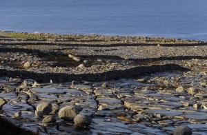 The Burren (pronounced