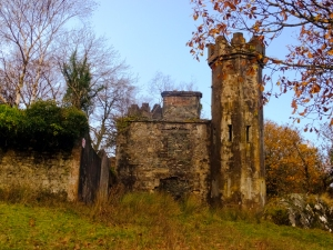 There is much to see in and around Killarney National Park, including Muckross House and Abbey, Ross Castle, and Torc Waterfall. But we had a long drive home and were losing light, so we had to be content with a drive through the park, stopping whenever we saw something of interest, like this unnamed ruin.