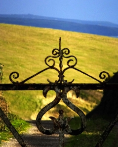 Detail, iron gate, County Cork, Ireland.