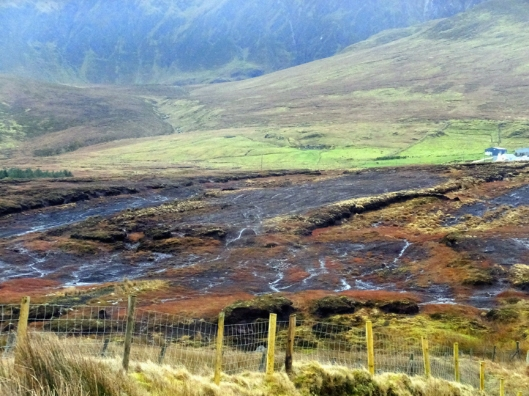 We passed a number of sites where peat was being harvested. These bogs of ancient organic matter have been providing fuel in Ireland for thousands of years.