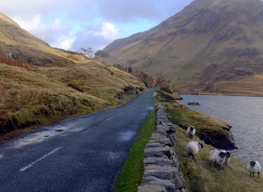 At the end of a hellish night's walk through cold wind, rain and sleet, the starving Irish were given no relief, no food of any kind. They were simply turned away. The next day, the roadsides between Delphi and Louisburgh -- and the shoreline of Doolough -- were strewn with dead bodies.