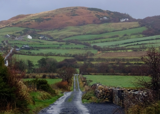 "Much of County Mayo is comprised of rolling hills dotted with farmhouses. The pastures are laced by hedgerows and threaded by ""boreens."""
