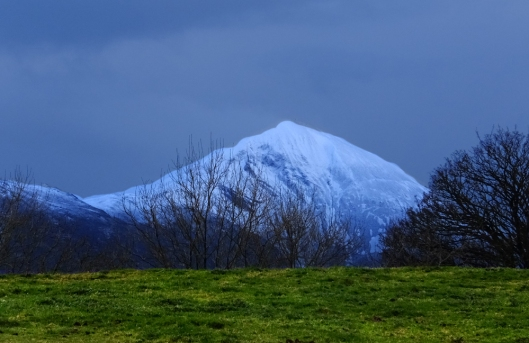 Croagh Patrick is one of those half-mile-high mountains. This is the view of Croagh Patrick from our yard the morning it snowed. Croagh Patrick had been a site of pagan pilgrimage, especially for the summer solstice, since 3,000 B.C.