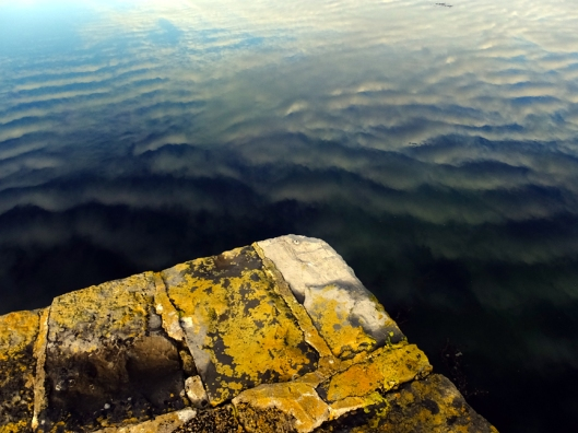 An old moss-coated stone pier jutted into the bay near our home.