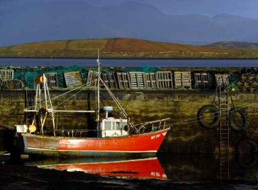 The bay supports a thriving seafood industry.
