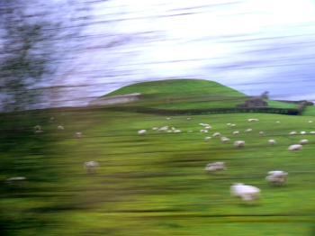 From the Newgrange visitors center, visitors are assigned to tour groups and are taken by bus to the site itself. This photo was taken from the bus as we approached. Newgrange appears first as a massive mound in the distance, behind fields of grazing sheep.