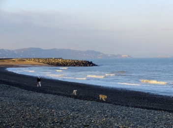 In the chilly January wind, the broad, rocky beach was almost deserted.