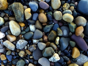 The pebbles display a vast variety of colors.