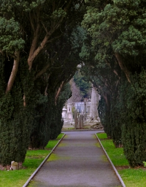 Not unlike Pere Lachaise Cemetery in Paris, a visit to Glasnevin is a beautiful way to explore the nation's history.