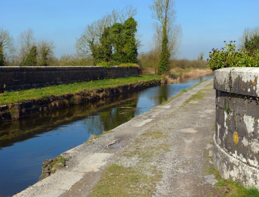Boyne Aqueduct-Boleykeogh-13x17-72dpi-P1970379