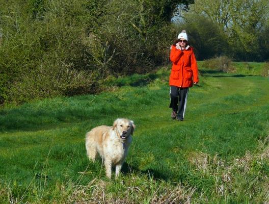 Dog and Walker-13x17-72dpi-P1970488