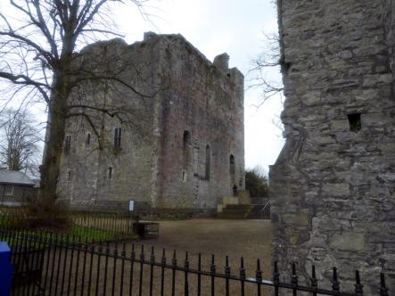 Geraldine Castle-P1020705