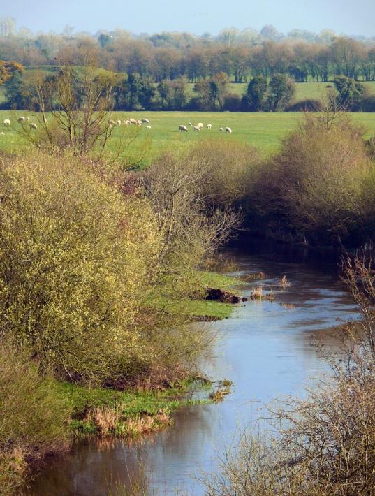 River Boyne From Aqueduct-V-13x17-72dpi-P1970373.jpg