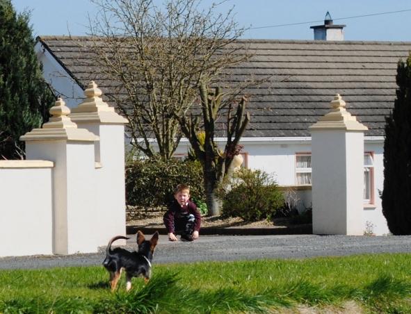 RCP-Boy and dog 1-72dpi